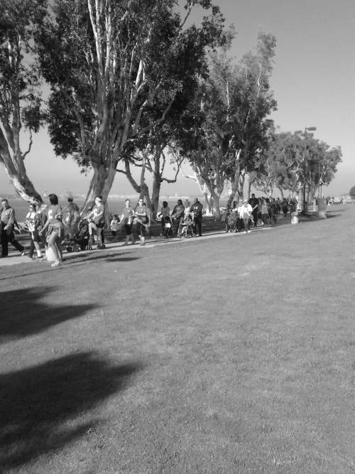 2014 San Diego Lung Force Walk!
