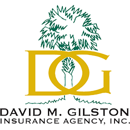 David M Gilston Insurance Agency Inc