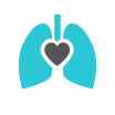 lungs and heart icon